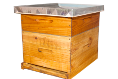 simplybee_hive_complete_front